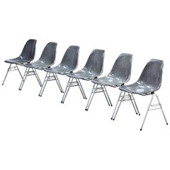"Set of 6 Elephant Grey ""DSS"" Eames Chairs"
