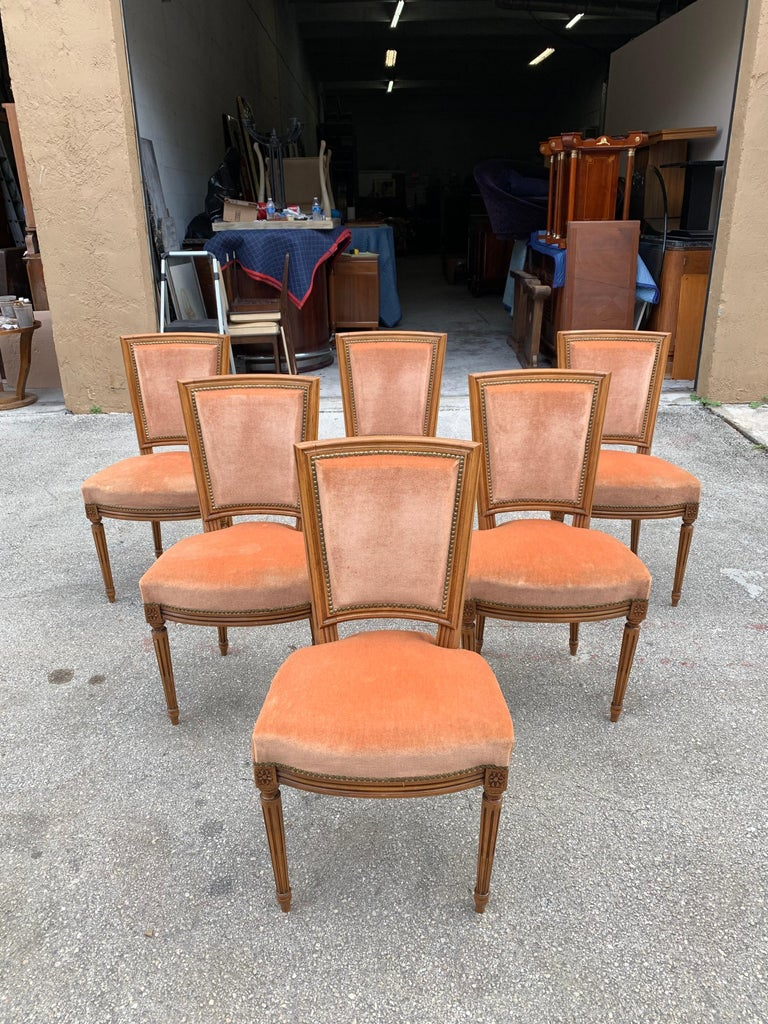 Set of 6 French Louis Xvl Solid Mahogany Dining Chairs, 1910s For Sale 5