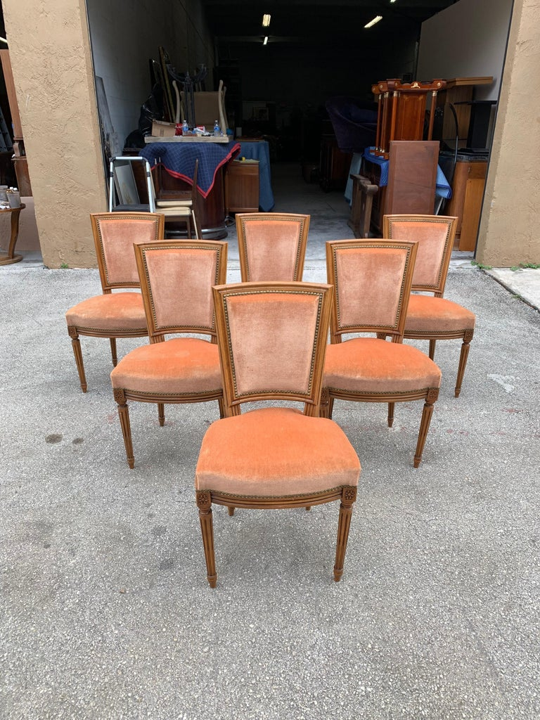 Set of 6 French Louis Xvl Solid Mahogany Dining Chairs, 1910s For Sale 7