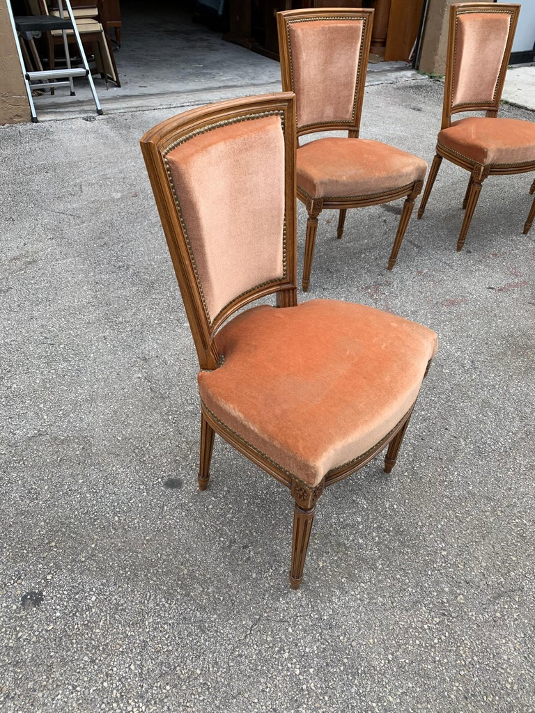 Set of 6 French Louis Xvl Solid Mahogany Dining Chairs, 1910s For Sale 8