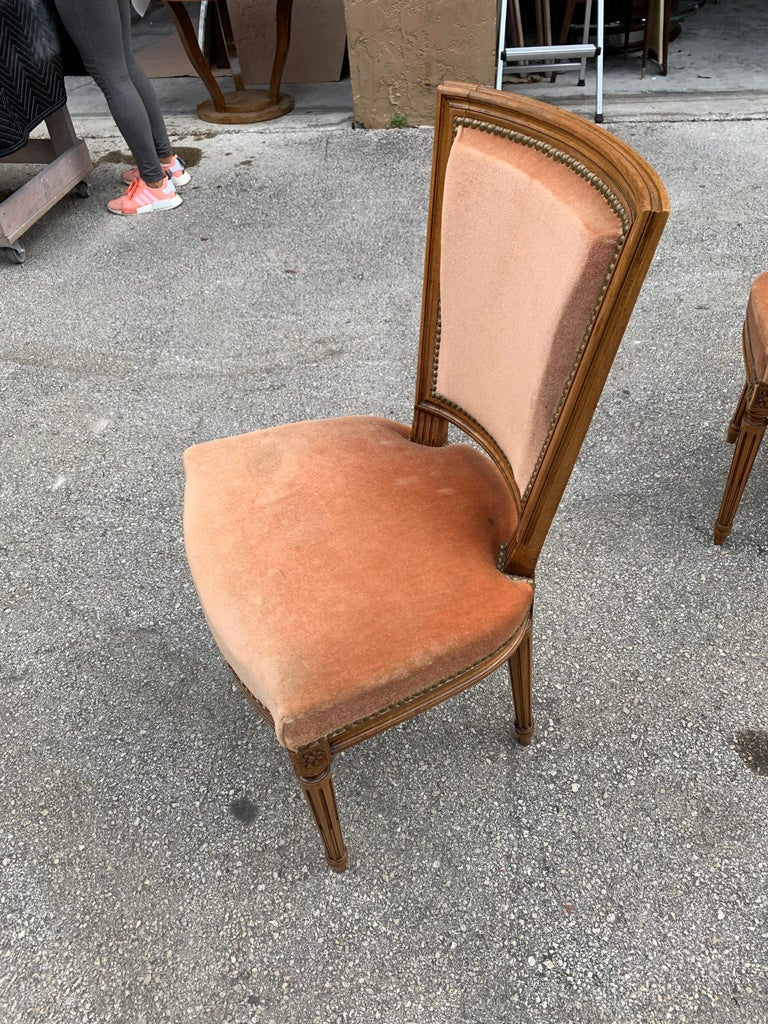 Set of 6 French Louis Xvl Solid Mahogany Dining Chairs, 1910s For Sale 11