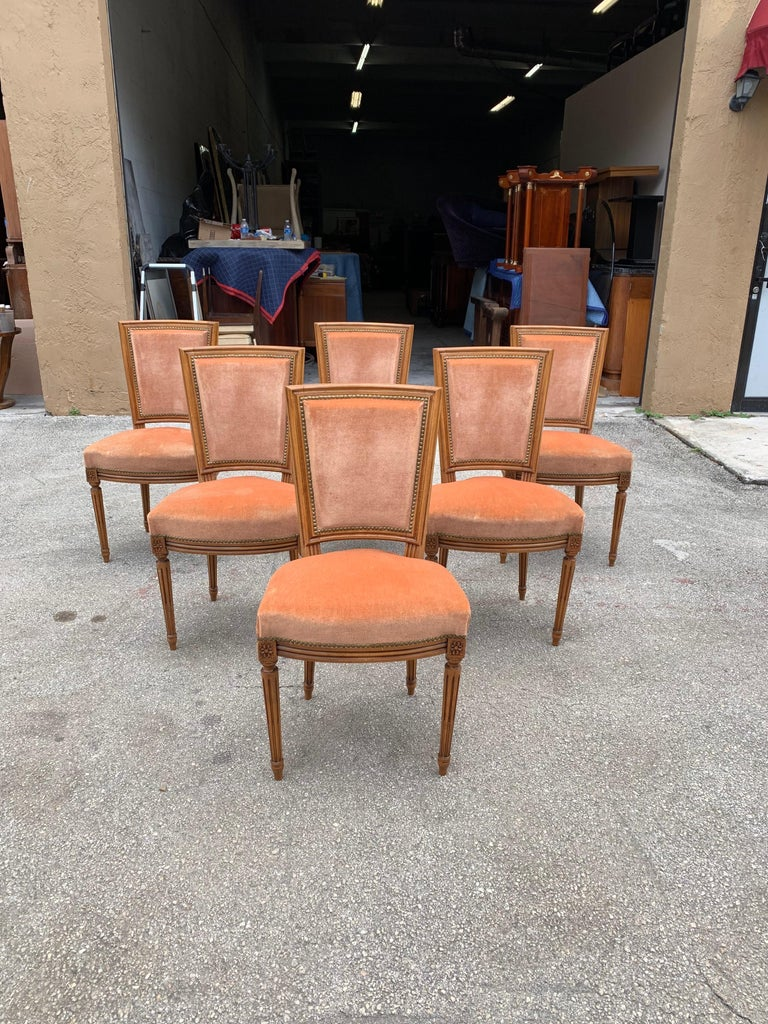 Fine set of six French Louis XVl dining chairs solid mahogany with peach color velvet, chair mahogany frames is in excellent condition. The reupholstery is original peach velvet color in very good condition all 6 dining chairs and very sturdy.