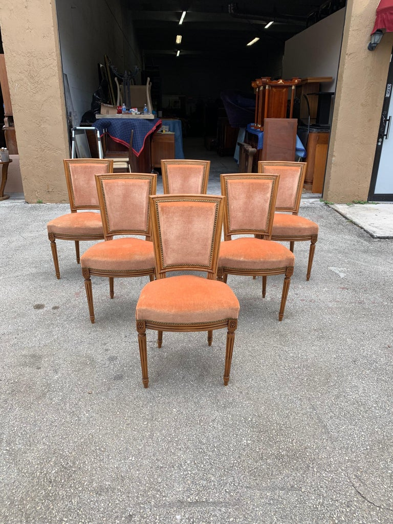 Louis XVI Set of 6 French Louis Xvl Solid Mahogany Dining Chairs, 1910s For Sale
