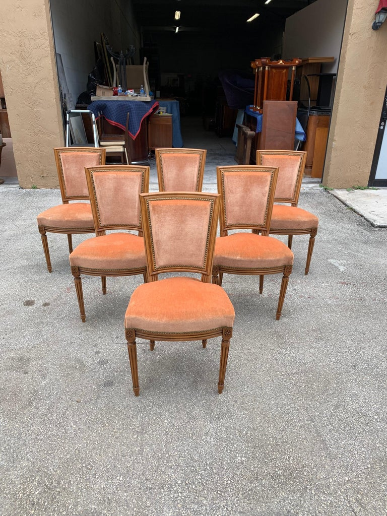 Set of 6 French Louis Xvl Solid Mahogany Dining Chairs, 1910s In Good Condition For Sale In Hialeah, FL