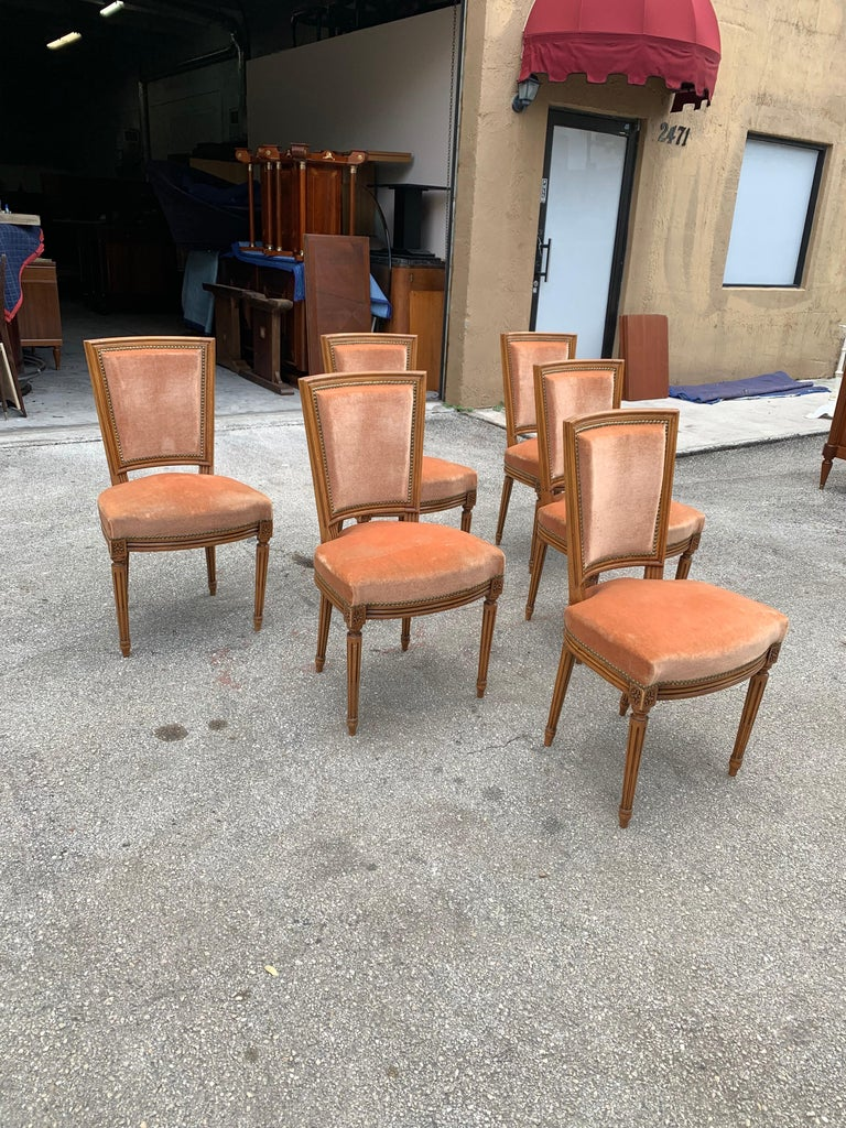 Early 20th Century Set of 6 French Louis Xvl Solid Mahogany Dining Chairs, 1910s For Sale