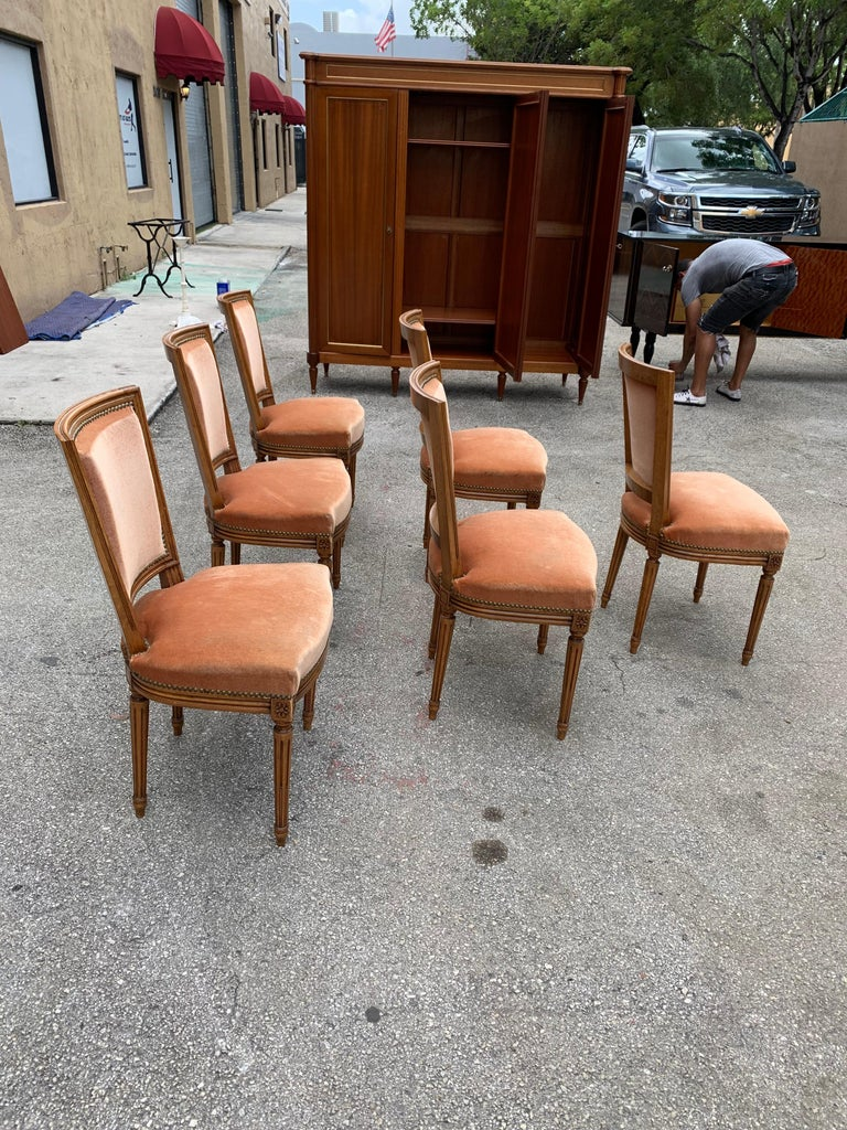 Set of 6 French Louis Xvl Solid Mahogany Dining Chairs, 1910s For Sale 1