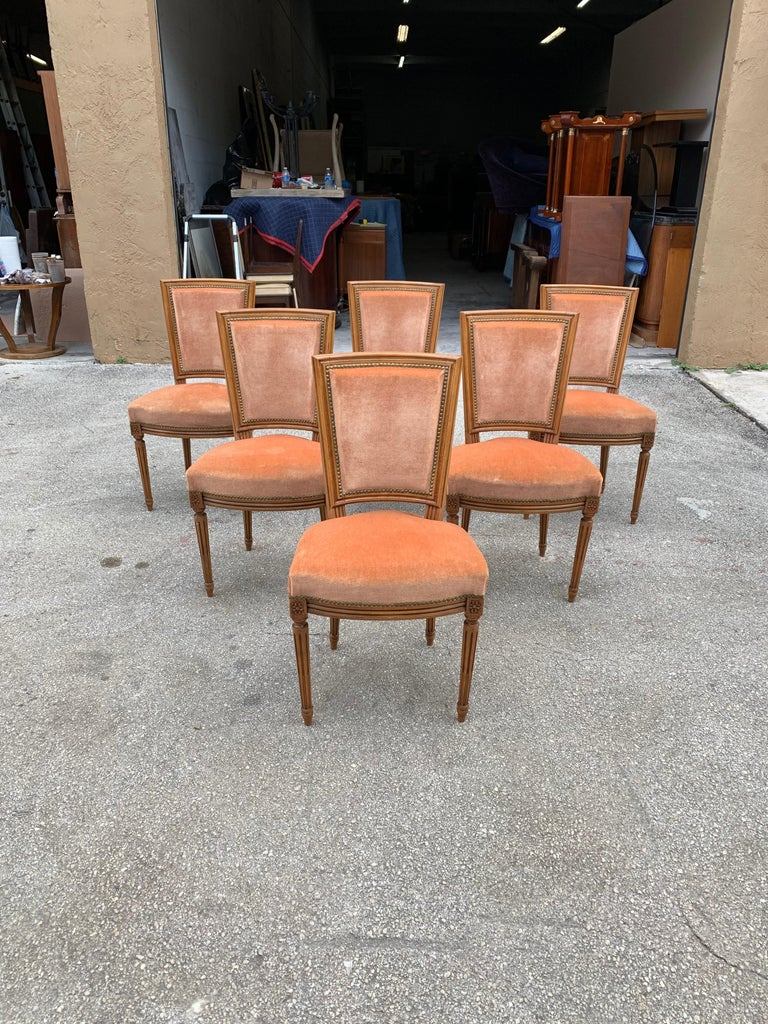 Set of 6 French Louis Xvl Solid Mahogany Dining Chairs, 1910s For Sale 2
