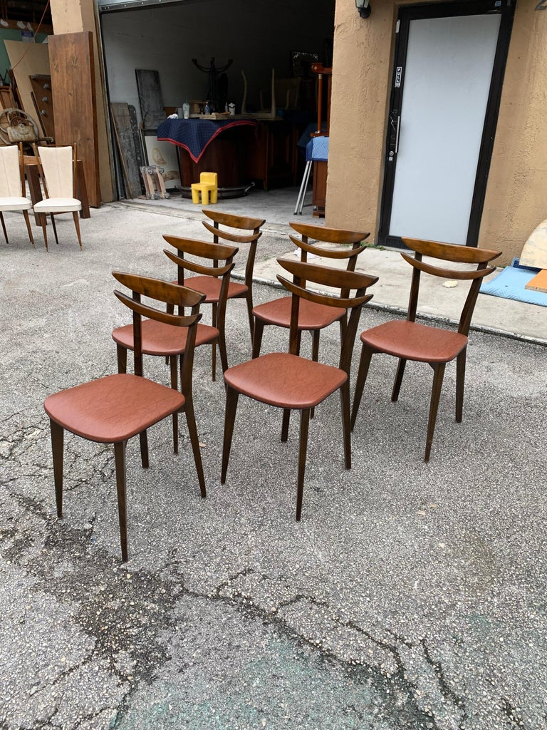 Set of 6 French Vintage Mid-Century Modern Solid Mahogany Dining Chairs, 1950s For Sale 2