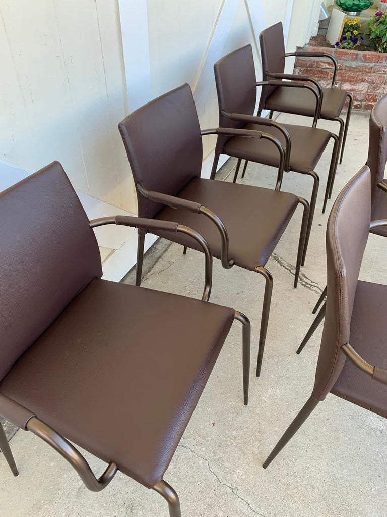 Set of 6 Gazzella Armchairs by Tom Kelley for Enrico Pellizzoni For Sale 12