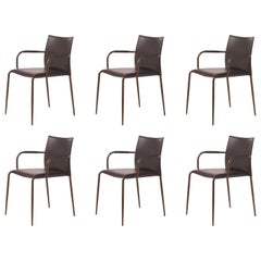 Set of 6 Gazzella Armchairs by Tom Kelley for Enrico Pellizzoni