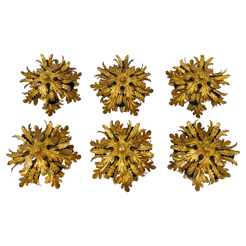 Set of 6 Golden Florentine Flower Shape Flushmounts by Banci, Italy, 1970s