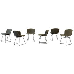 Set of 6 Harry Bertoia Wire Chairs with Original Green Seat Covers, Knoll, USA