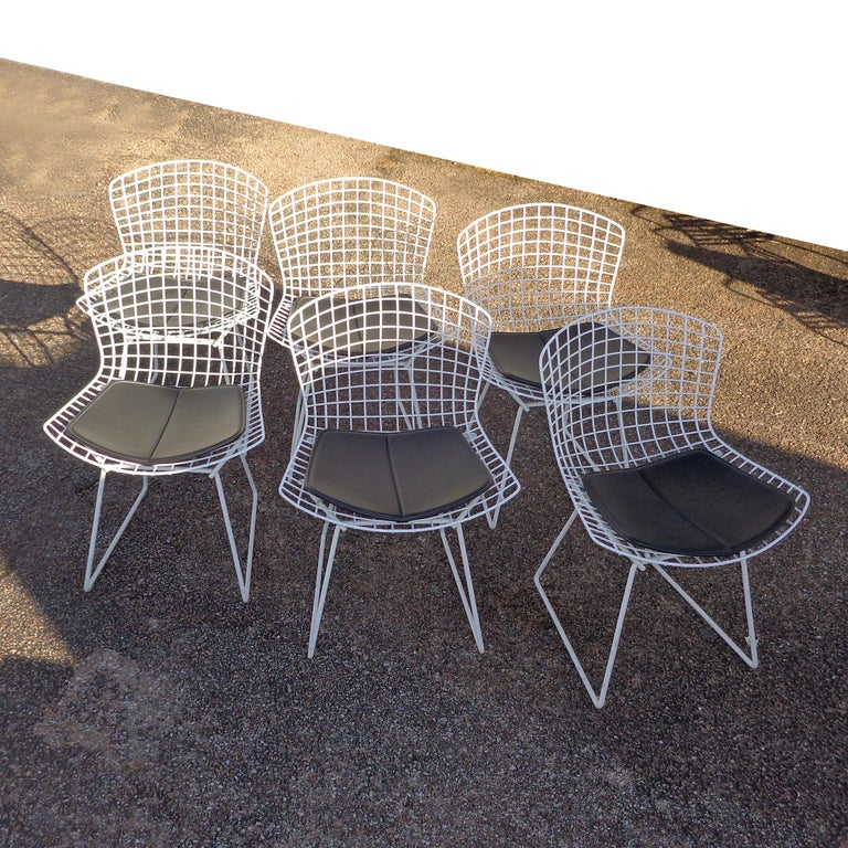 American Set of 6 Knoll Bertoia Side Chairs For Sale