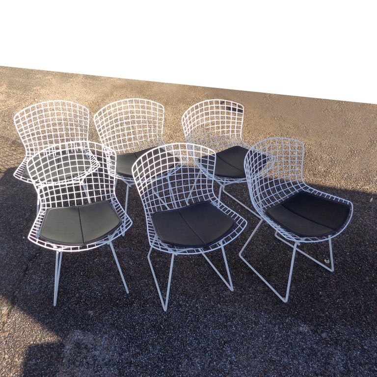 Set of 6 Knoll Bertoia Side Chairs In Good Condition For Sale In Pasadena, TX