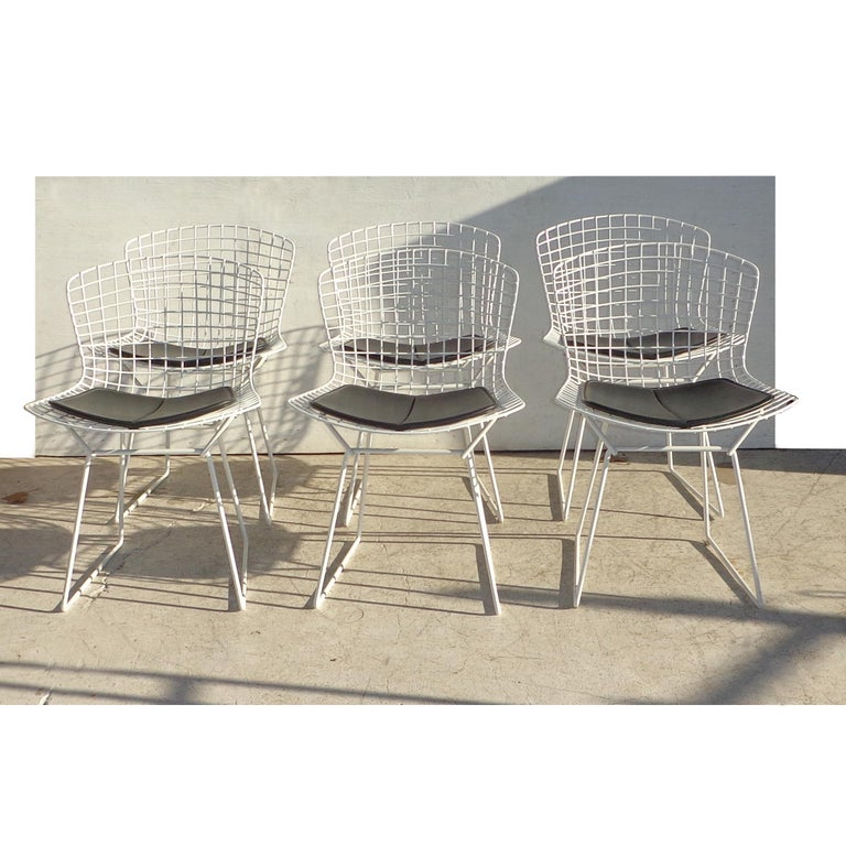 20th Century Set of 6 Knoll Bertoia Side Chairs For Sale