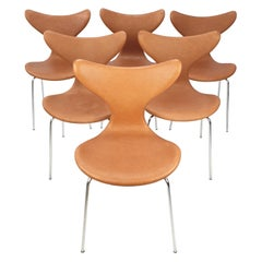 Set of 6 Lily Chairs by Arne Jacobsen for Fritz Hansen, 1960s