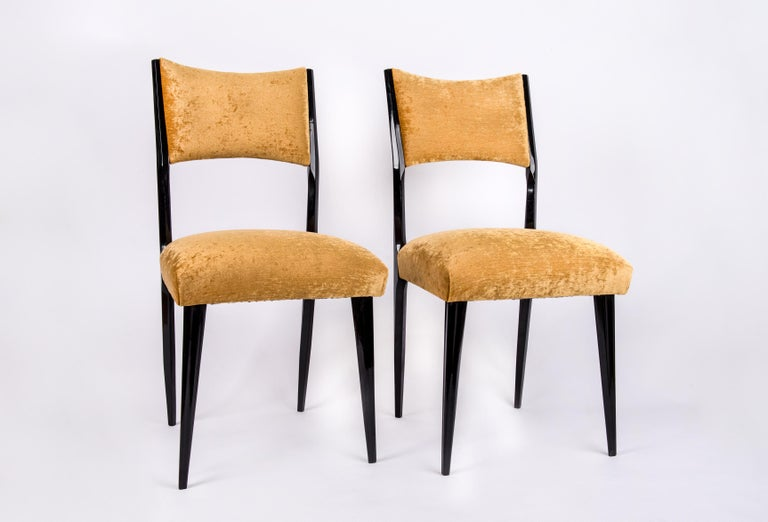 Italian midcentury design. Set of 6 black lacquered dining chairs, refurbished and reupholstered with a golden-yellow colored velvet .The wooden part is beautifully curved, very elegant.