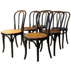 Set of 6 Original Bentwood Chairs by JJ kohn & Mundus