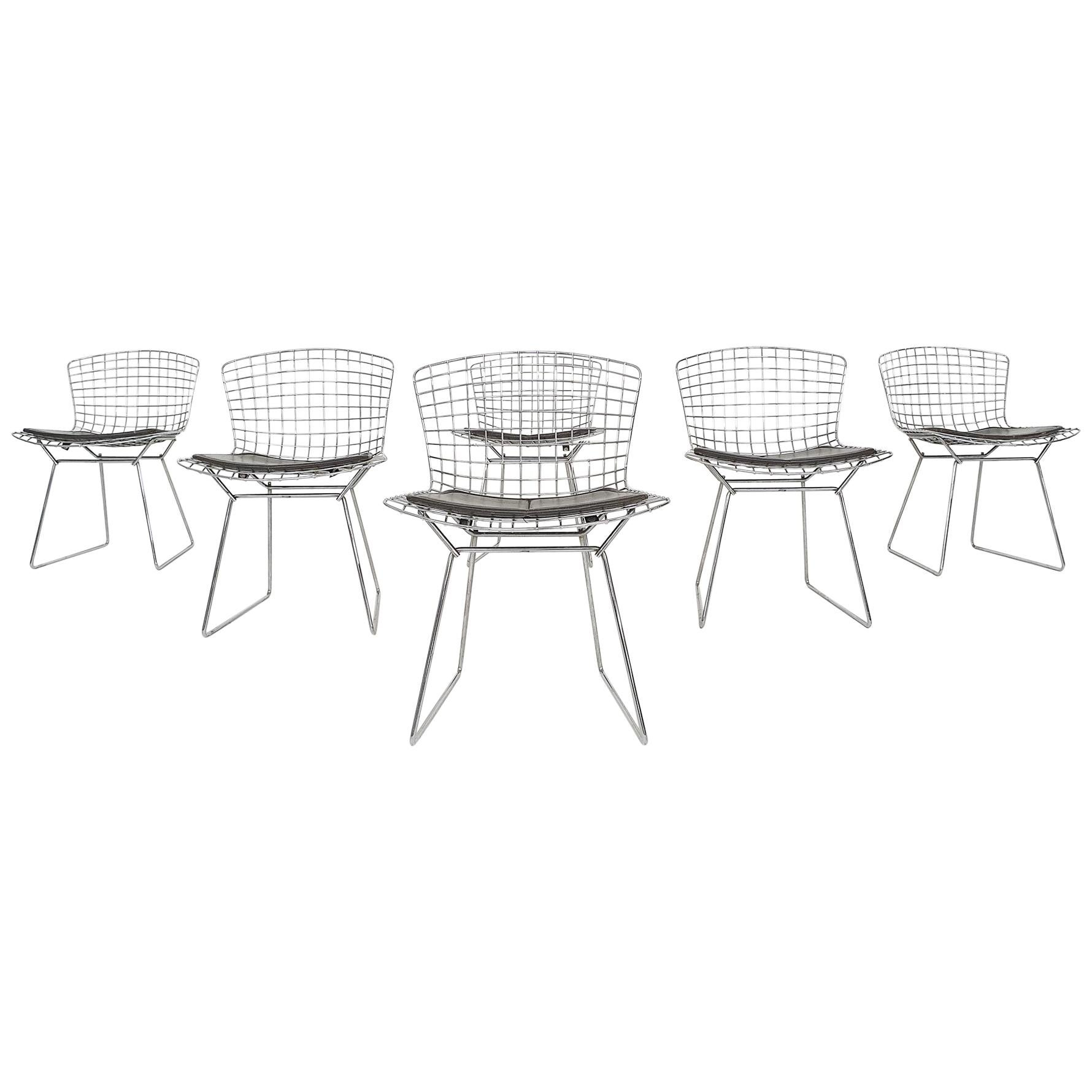 Set of 6 Original Vintage Harry Bertoia for Knoll Wire Dining or Side Chairs