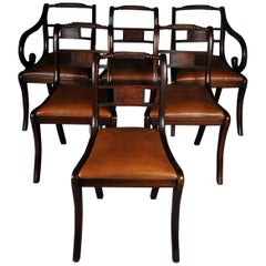 Set of 6 Regency English Chairs or Armchairs, 20th Century