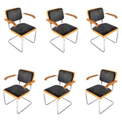 Set of 6 Thonet Cesca Chairs by Marcel Breuer