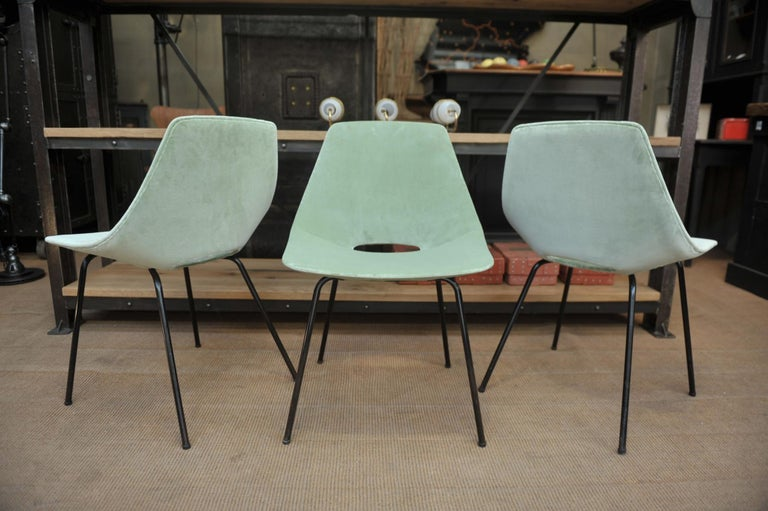 Set of 6 Tonneau Chairs by Pierre Guariche for Steiner, 1954 For Sale 4