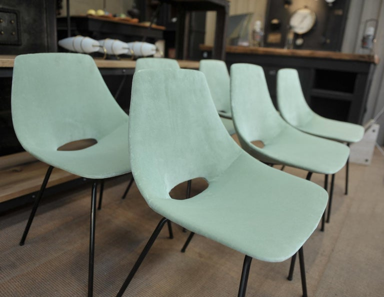 French Set of 6 Tonneau Chairs by Pierre Guariche for Steiner, 1954 For Sale