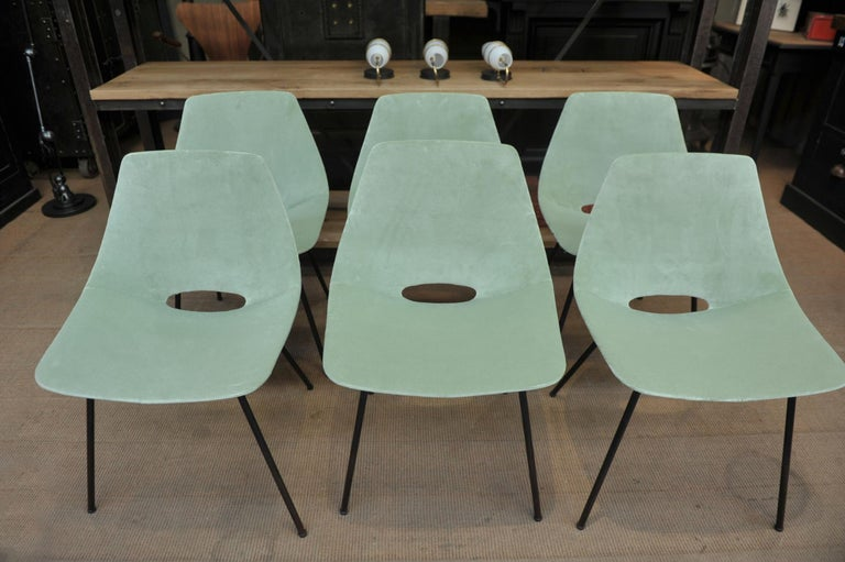 Velvet Set of 6 Tonneau Chairs by Pierre Guariche for Steiner, 1954 For Sale