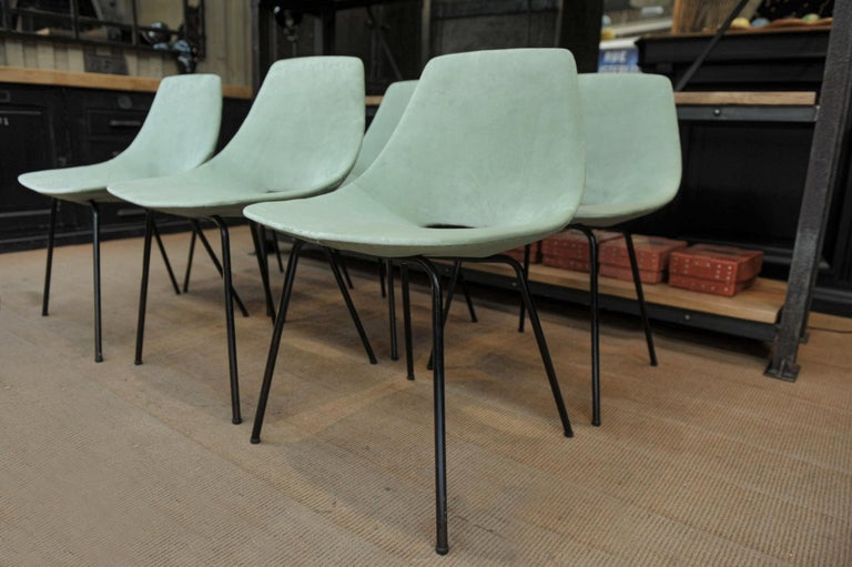 Set of 6 Tonneau Chairs by Pierre Guariche for Steiner, 1954 For Sale 1