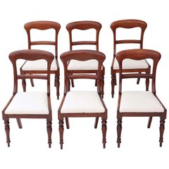 Set of 6 Victorian Mahogany Dining Chairs, circa 1850