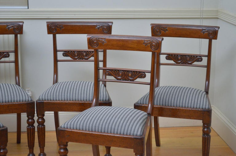 Set of 6 William IV Mahogany Dining Chairs In Good Condition For Sale In Whaley Bridge, GB