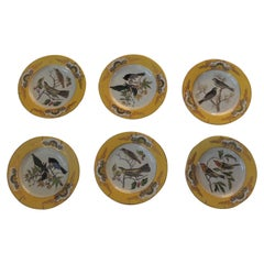 Set of '6' Yellow and Gold Chinese Export Ceramic Decorative Plates