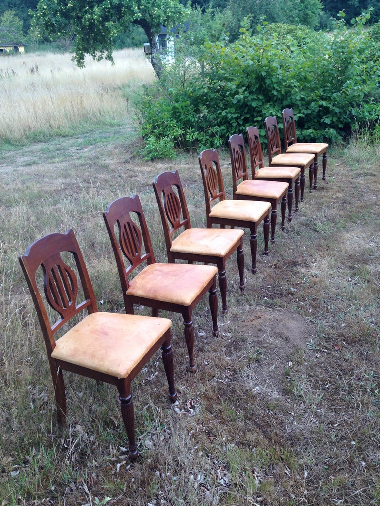 Danish Set of 8 Art Nouveau Chairs in Mahogany and Light Oxhide Seats, 1910s-1920s For Sale