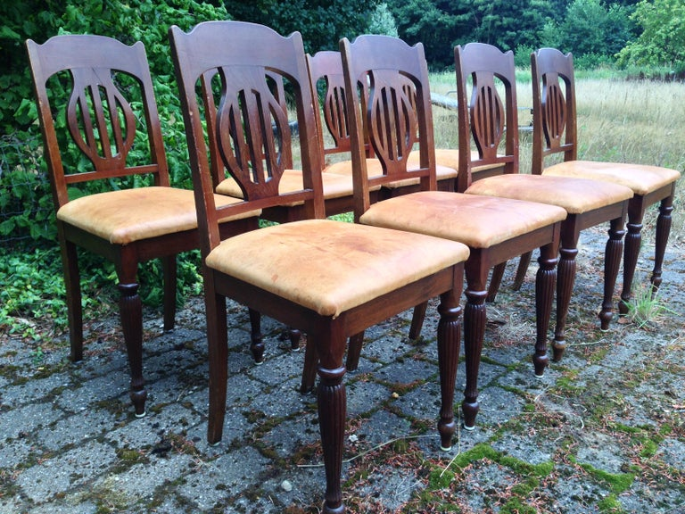 Set of 8 Art Nouveau Chairs in Mahogany and Light Oxhide Seats, 1910s-1920s In Fair Condition For Sale In Vejle, DK