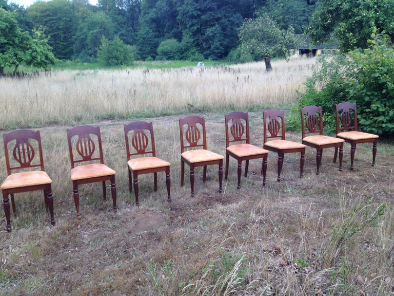 Set of 8 Art Nouveau chairs in mahogany and oxhide, 1910s-1920s.