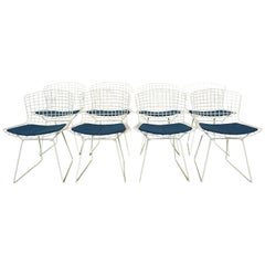 Set of 8 Knoll Bertoia White Wire Chairs Original Seat Cushions, 1950's