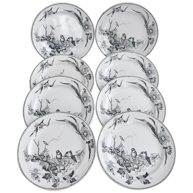 English Set of 8 Plates, Aesthetic Movement Birds, Jacob Baggaley, 1880s For Sale