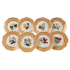 Set of 8 Plates Coalport, Peach with Flowers, Porcelain Regency 1820-1825