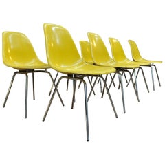 Set of 8 Yellow Fiberglass and Chrome Metal Chairs by Eames for Vitra Circa 1980