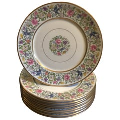 Set of 9 Lamberton China Service Plates