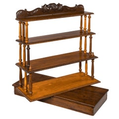 Set of Anglo-Ceylonese Specimen Wood Campaign Wall Shelves in a Travelling Box