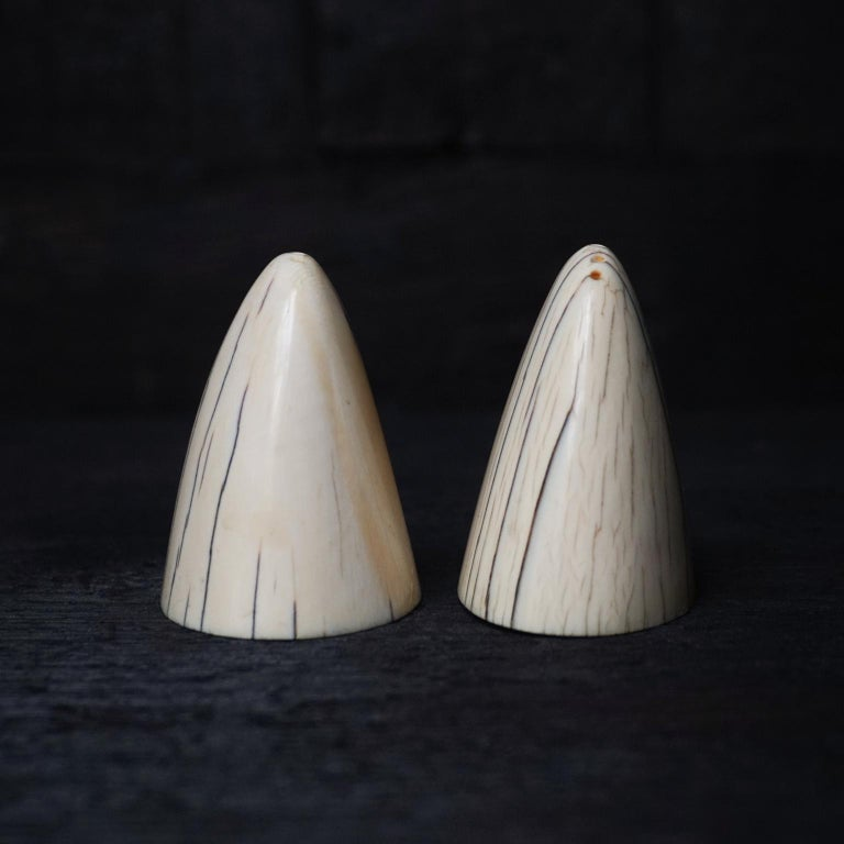 German Set of Art Deco Tip of Walrus Tusks Salt and Pepper Shakers For Sale