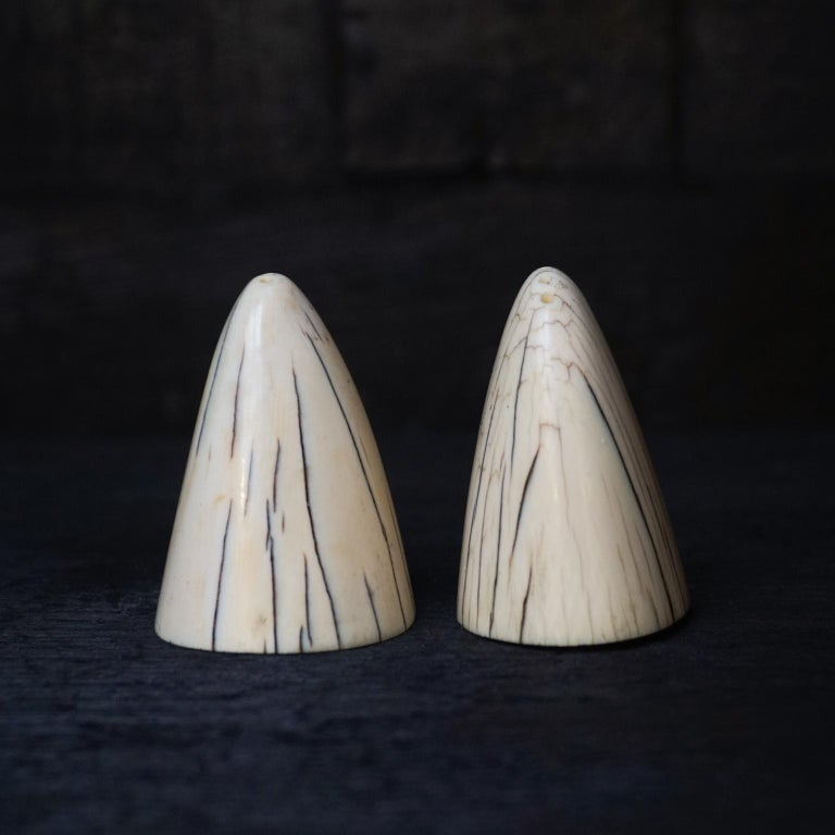 20th Century Set of Art Deco Tip of Walrus Tusks Salt and Pepper Shakers For Sale