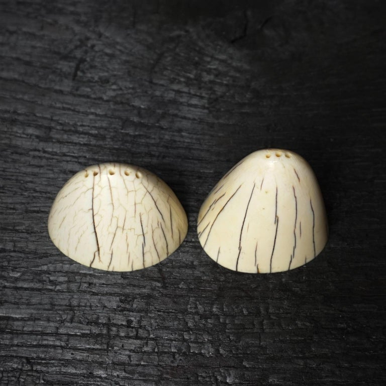 Set of Art Deco Tip of Walrus Tusks Salt and Pepper Shakers For Sale 1