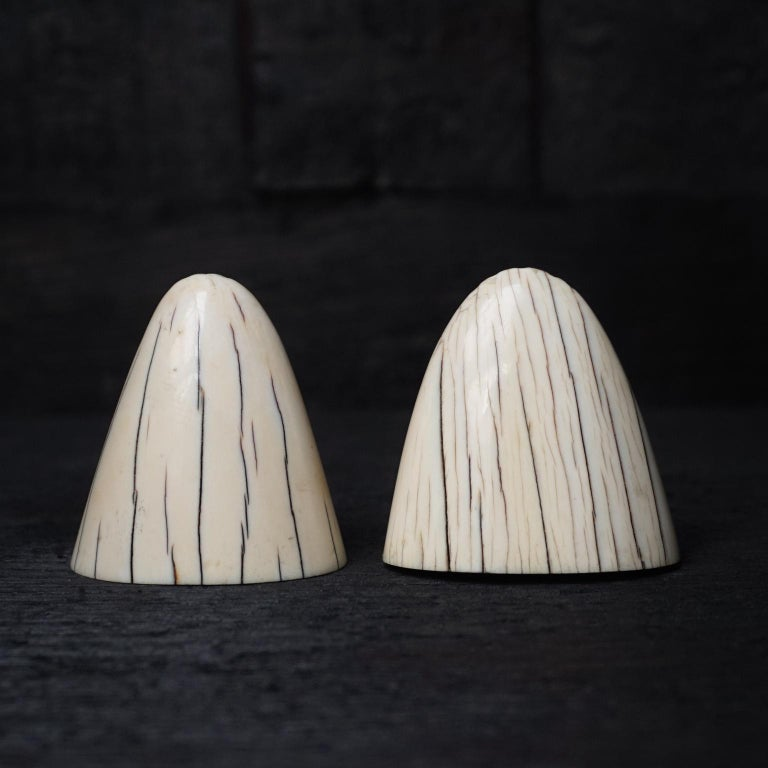 Set of Art Deco Tip of Walrus Tusks Salt and Pepper Shakers For Sale 2