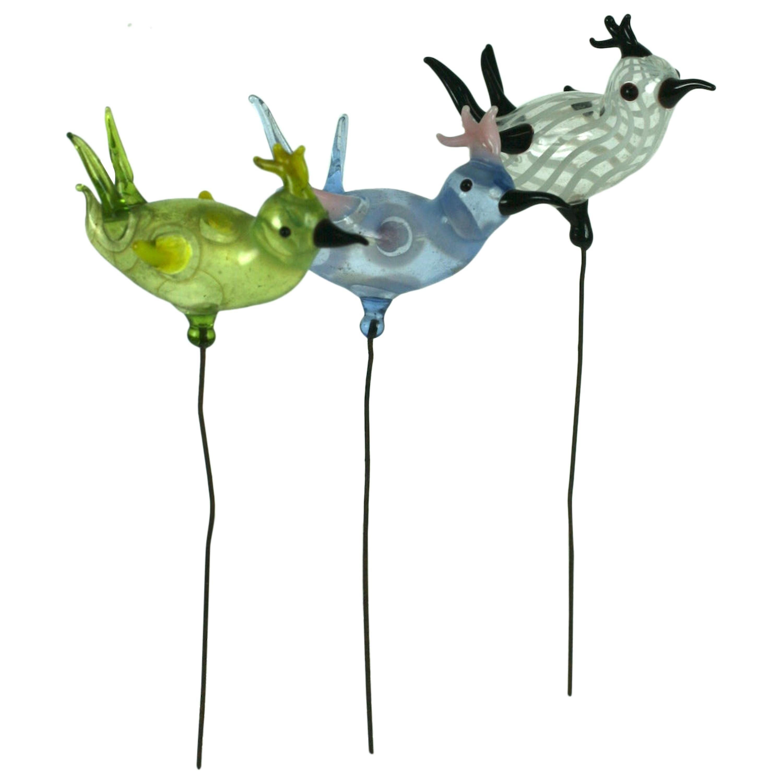 Set of Bimini Birds