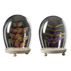 Set of Colorful Insect Compositions in Czech Mouth Blown Glass Globe