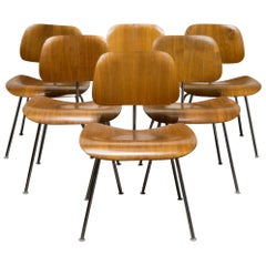 Set of Early Ray and Charles Eames for Herman Miller DCM Chairs, circa 1950s
