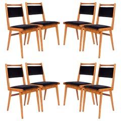 Set of Eight 20th Century Black Velvet Chairs, Poland, 1960s