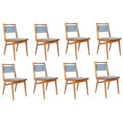 Set of Eight 20th Century Blue Velvet Chairs, Poland, 1960s